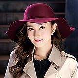 Xme Sombrero de Mujer, Sombrero de Fieltro de Lana de Estilo Retro de Moda británica para Mujer.Sombrero de Invierno cálido y frío
