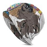 Gorros Unisex Gorros de Dibujos Animados Alpaca Perú Llama Sombrero de Punto étnico Cráneo Cap Invierno Verano Cálido Mujeres Hombres Sombreros Negro