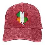 Hoswee Gorra de Béisbol Ajustable Mens Womens Baseball Cap Irish Italian Flag Washed Denim Trucker Hat for Men